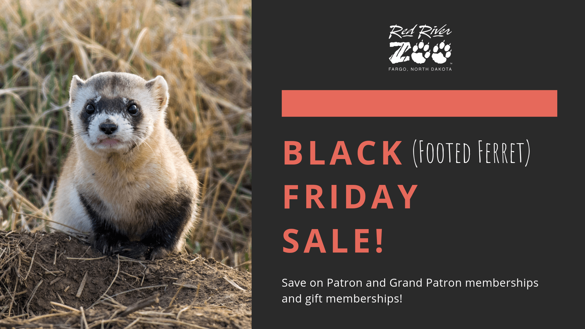Black Friday Week Sale Red River Zoo Fargo Nd